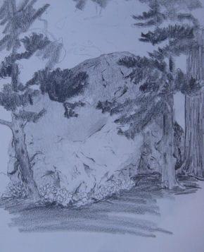 sketch of rock June 15,2009