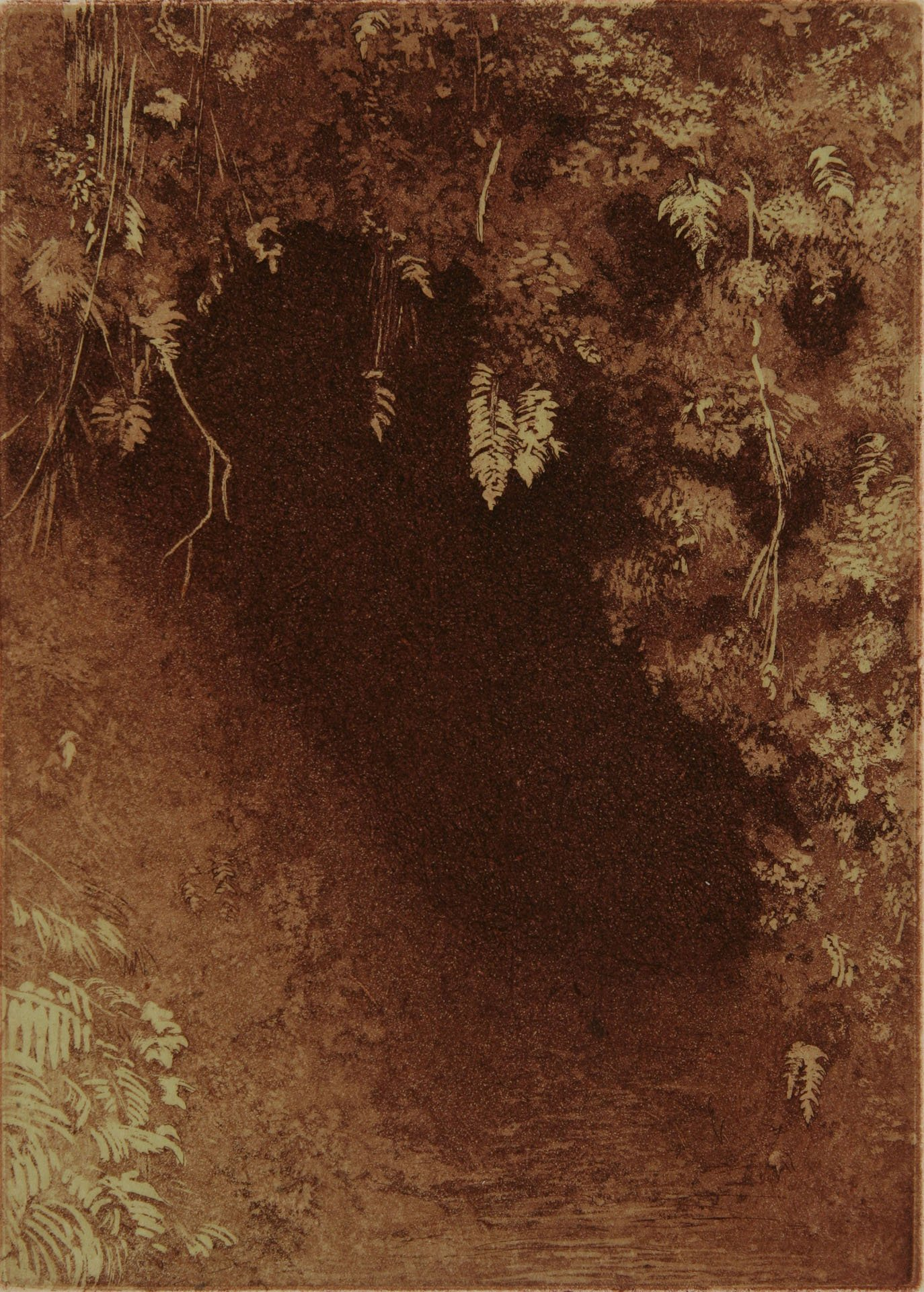 "Lava Tube #2; etching, chine colle; 8.25"" x 6"", 2008"
